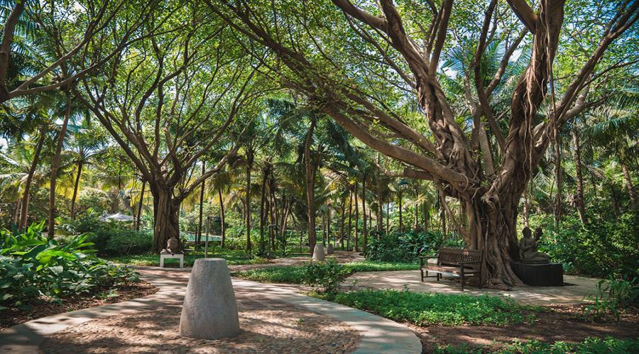 Aashyana Gardens
